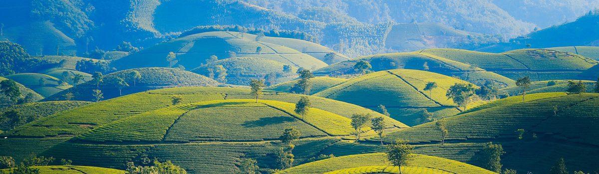 Vietnam community among 10 cheapest global tourist destinations